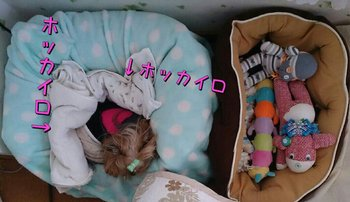 PicsPlay_1485216790654.jpg
